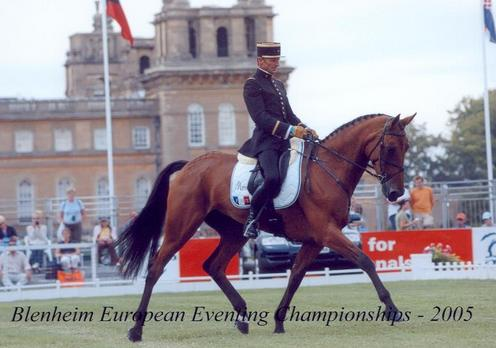 Ismene au dress des Championnats d\'Europe de BLenheim en 2005